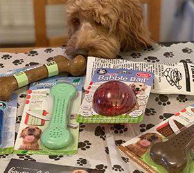 Pet Qwerks Toys