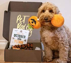 Pet Box Co – October Box